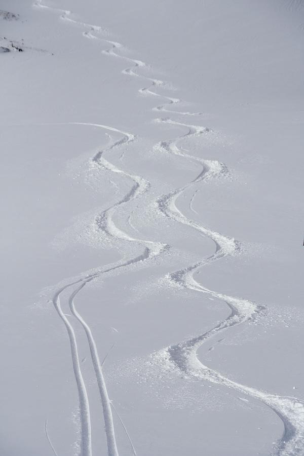ski_tracks_375821