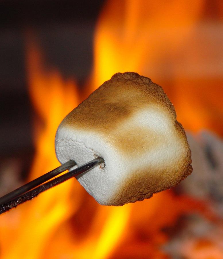marshmallowphoto_marshmallow_34149741