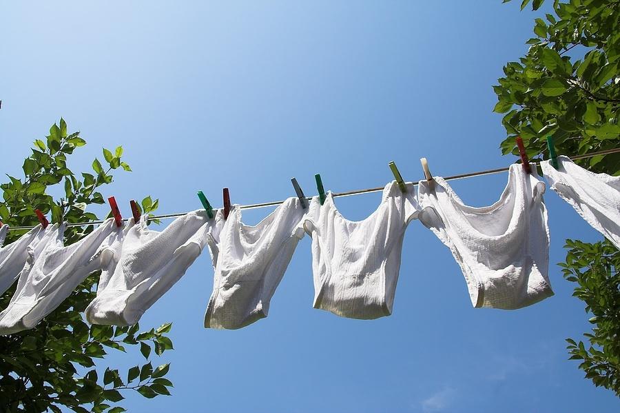 Panties hanging